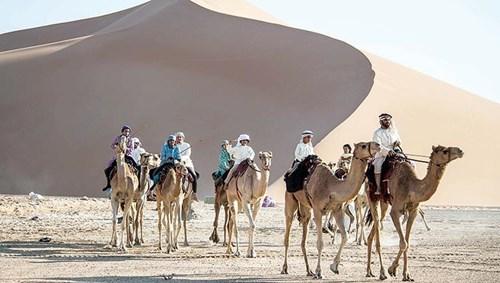 انطلاق الفرسان في صحراء الإمارات (من المصدر)