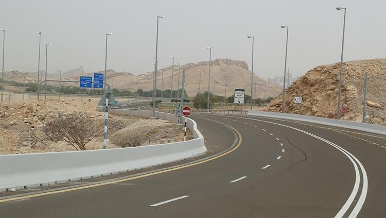 Create the Mount Hafeet mountain road with local plants