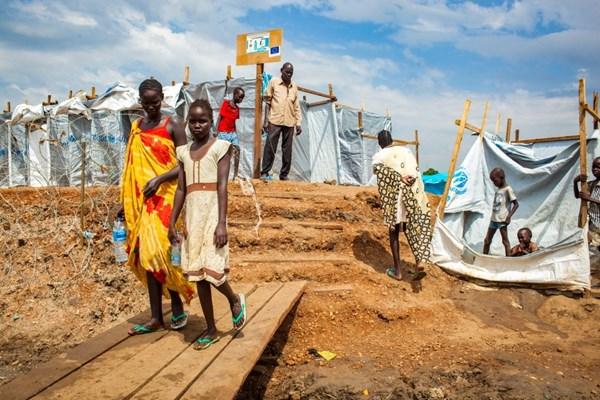 «القلب الكبير» تبني قرية متكاملة للمحتاجين وضحايا الأزمات ...