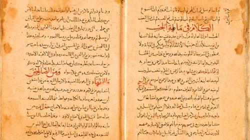 هولندا.. تحتضن أقدم المخطوطات العربية والإسلامية